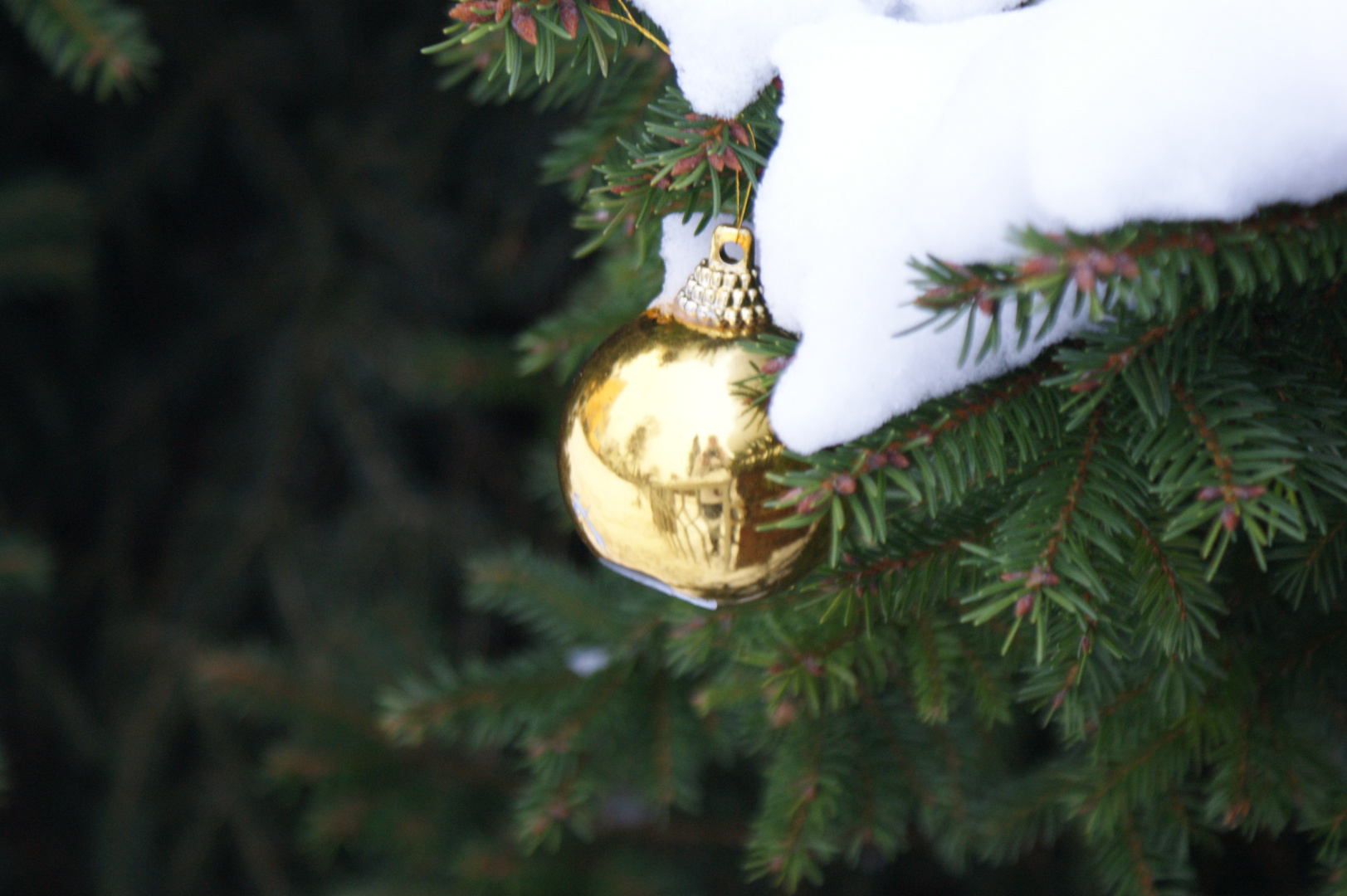 Weihnachtskugel im Januar