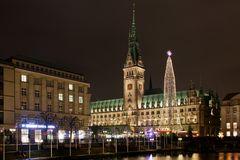 Weihnachtsmarkt am Rathaus - 1