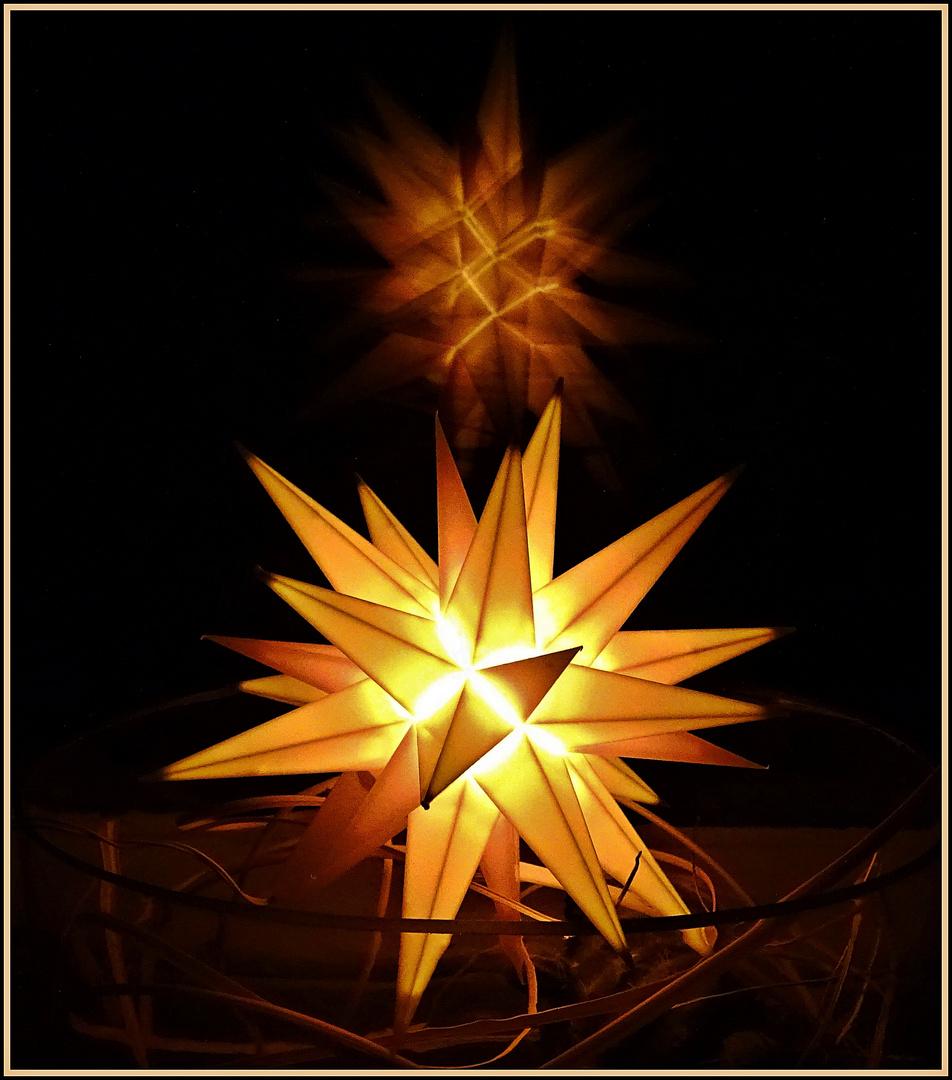 Weihnachtsstern Bild