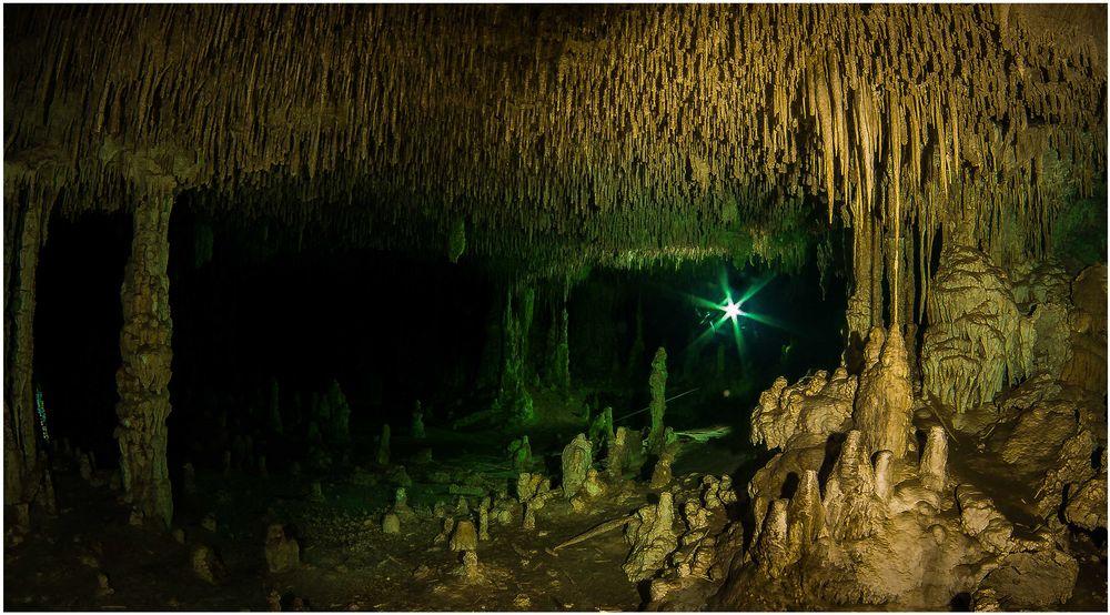 Weihnachtsstern - Grand Cenote III
