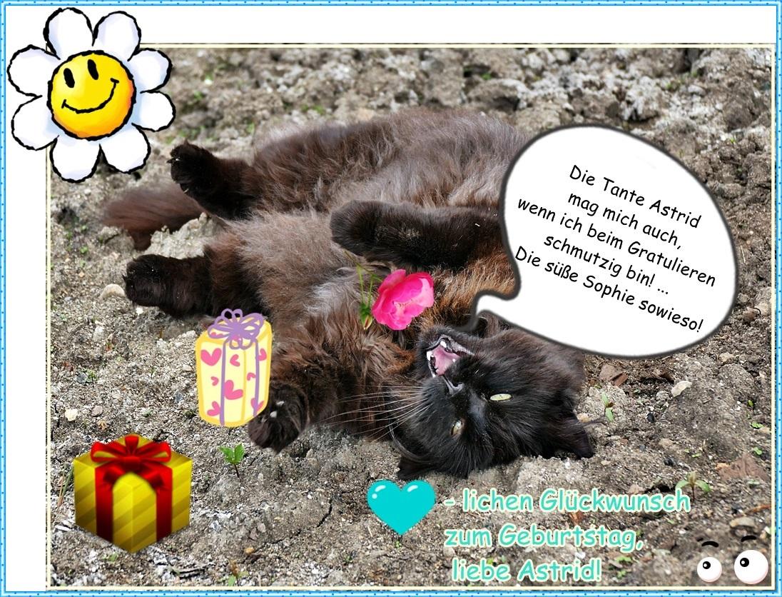 Weil Heute Dein Geburtstag Ist Foto Bild Spezial Emotionen