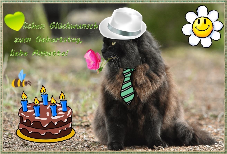 Weil heute dein Geburtstag ist ...