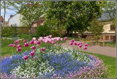 Weimars vesteckte Gärten 2