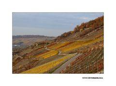 Wein Berge 2018