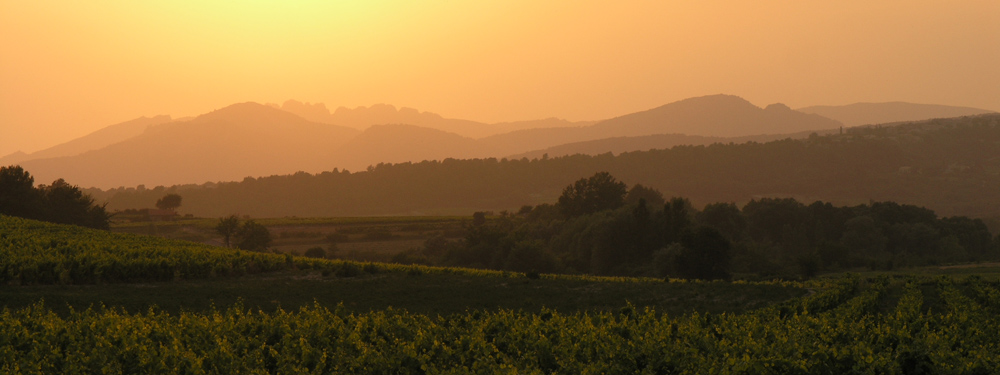 Wein und Berge - Dentelles de Montmirailles