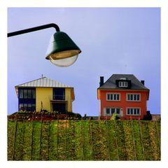 Weinberg mit 2 Häuser und Lampe