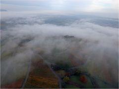Weinberg-Nebel-Landschaft