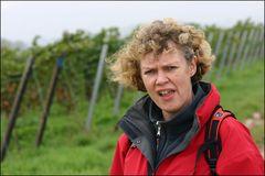 Weinbergwanderung bei Wind und Wetter ...