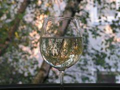 Weinsicht