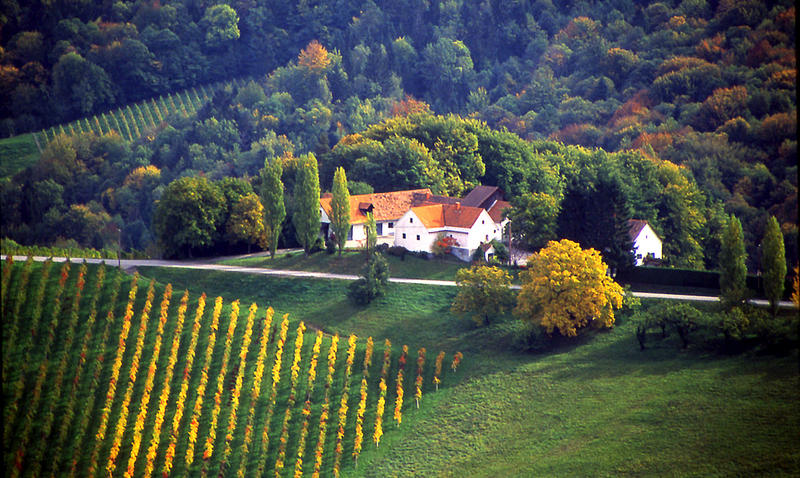 Weinstrasse bei Gablitz