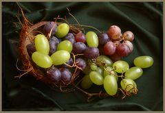 Weintrauben aus Mza.Argentinien