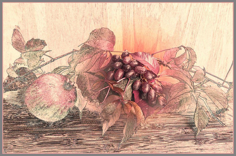 Weintrauben spezials