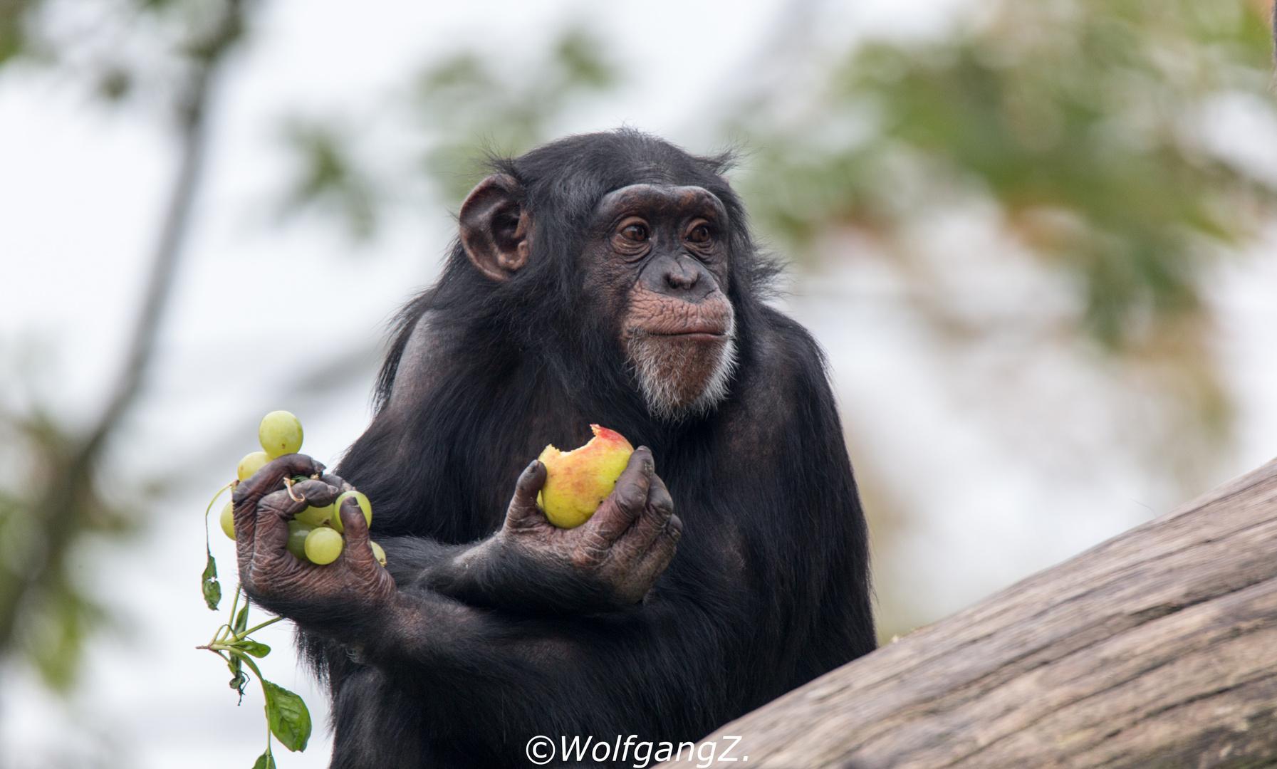 Weintrauben und Apfel
