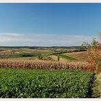 Weinviertler Herbst 08 ** 7