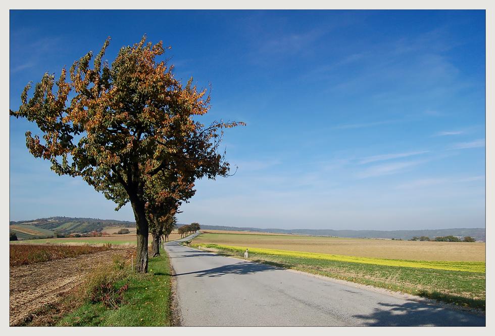 Weinviertler Herbst 08 ** 8