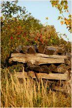 Weinviertler Herbst ~3