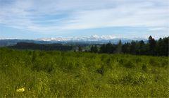 Weisse Gipfel