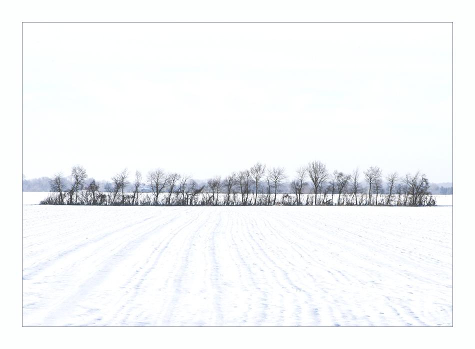 ...weiße kälte......