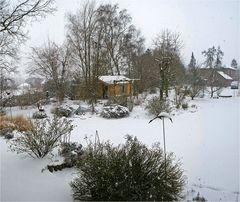 Weiße Pracht im Garten