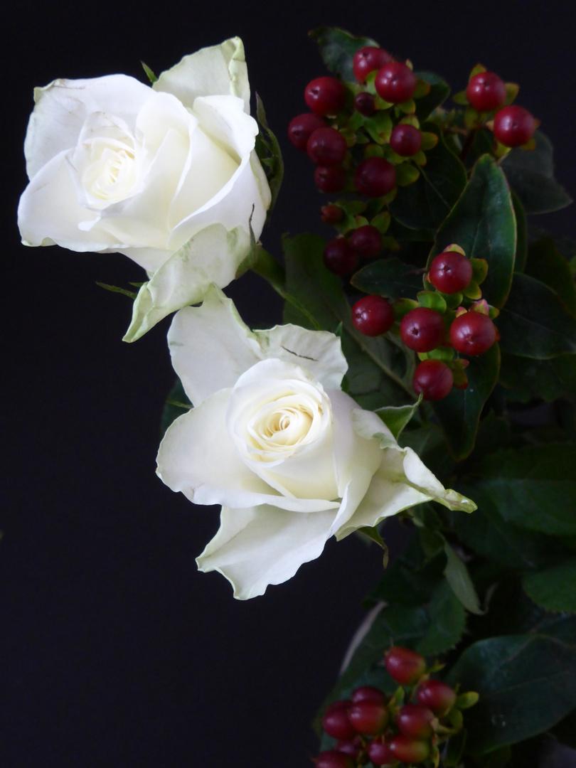 weisse Rosen und rote Fruechte Foto & Bild | pflanzen