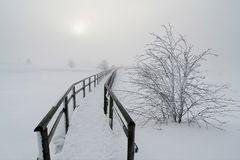 ~ weiße Stille ~