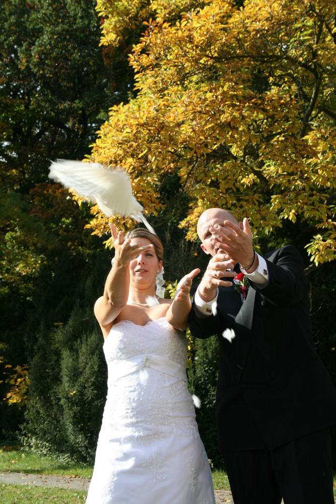 Weiße Tauben3