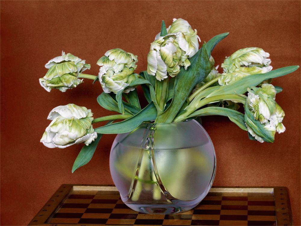 Weiße Tulpen in Kugelvase