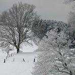 Weiße Weihnachten...
