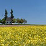 Weißes Kirchlein, versteckt in Blau und Gelb