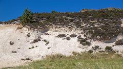 Weißes Kliff, Braderup/Sylt ... 02