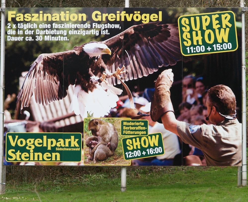 Weißkopfseeadler Sam mal anders - 4 x 2 Meter  ;-)