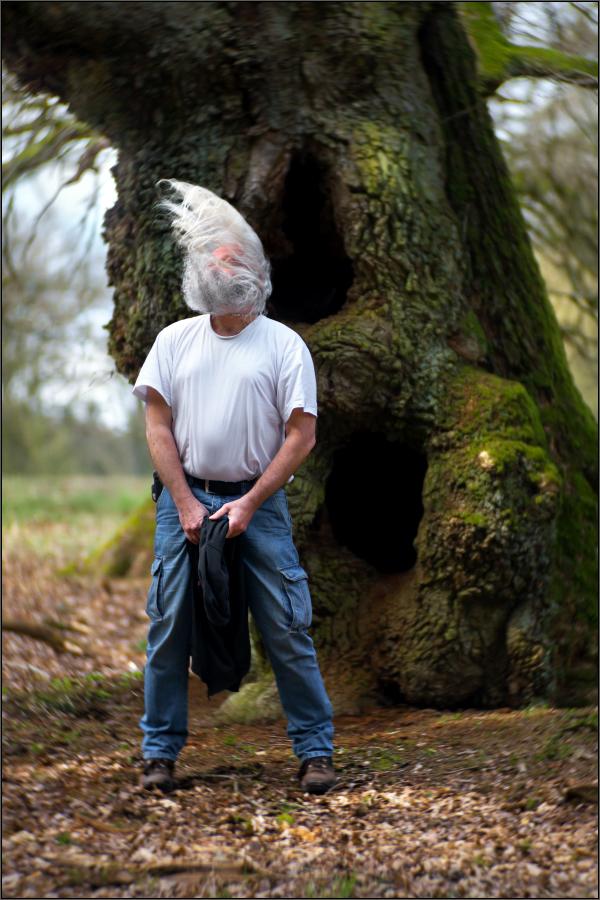 Weißschopfiger Eichenhäubling ;)