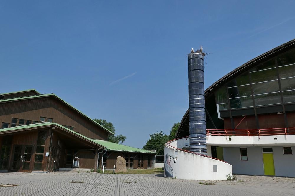 Weißstörche: Brutversuch bei der Rheinhalle 01