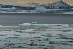 Weite Eislandschaften