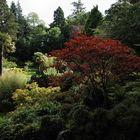 weiter geht der Rundgang durch die Powerscourt Gardens, Wicklow Mountains