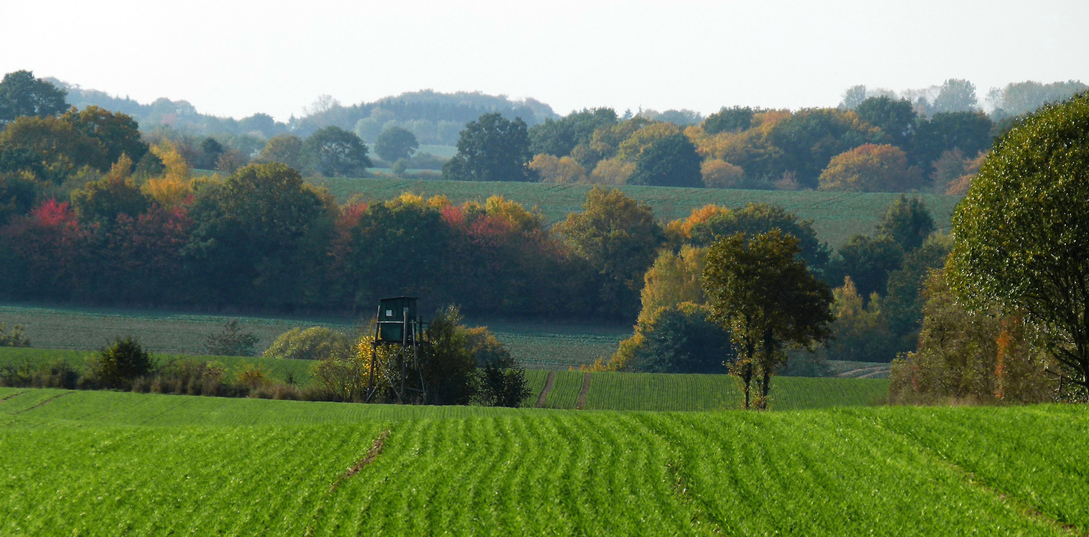 Weiter Herbstblick