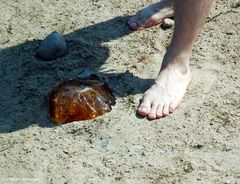 Welch ein Glückstag , heute am Strand .......