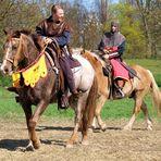 Welche Rasse ist das erste Pferd?