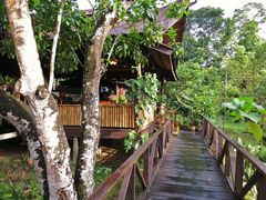 Welcome to Bilit Rainforest Lodge