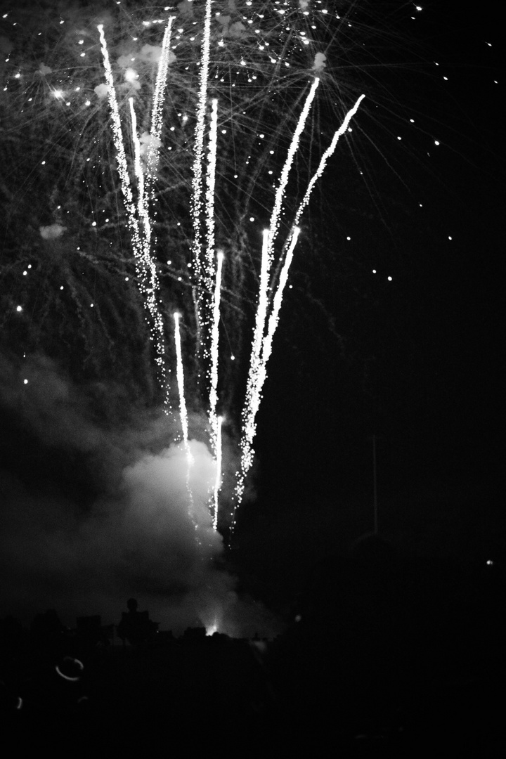 Welcome to the show !  Fireworks 2021