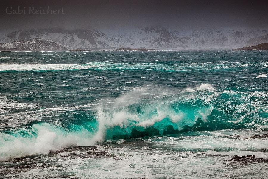 Wellen auf den Lofoten
