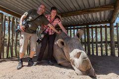 Welt-Nashorn-Tag