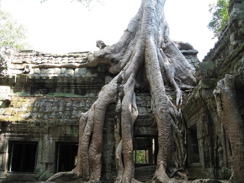 Weltkulturerbe Angkor