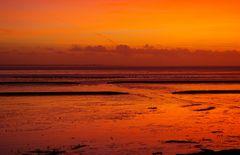 Weltnaturerbe der UNESCO vor Nordeich, heute Abend 17:45.........