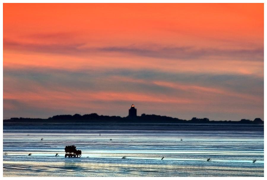 Weltnaturerbe - Nationalpark Wattenmeer...