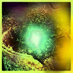 Wen das Kind der Hoffung in den ausgetrockneten Brunnen der Fantasie fällt...