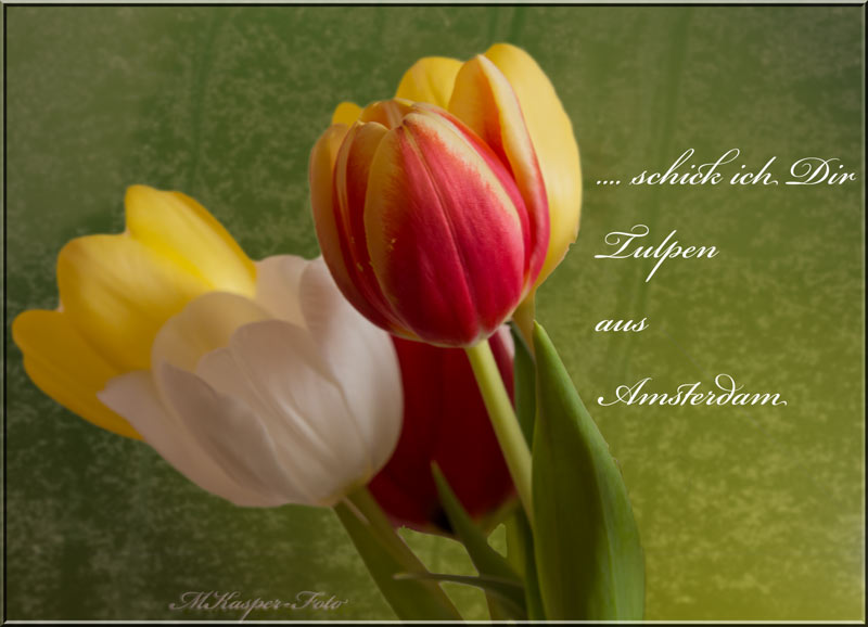 Wenn der Frühling kommt...