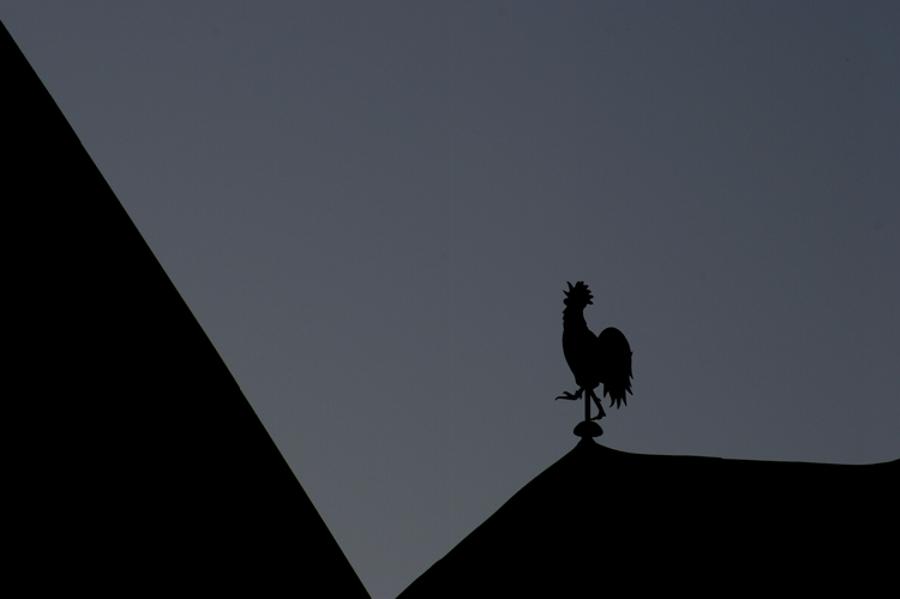 wenn der Hahn kräht