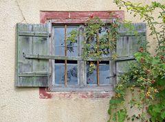 Wenn der Herbst ans Fenster klopft