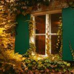 Wenn der Herbst ans Fenster klopft...